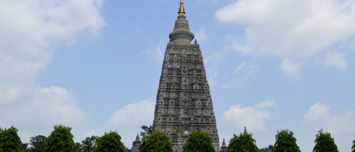 6 Best Things to Do in Bodh Gaya, India